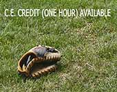 A baseball glove on grass.
