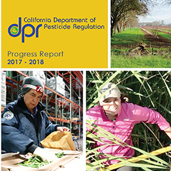 DPR Progress Report 2017-2018