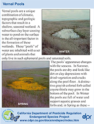 Vernal Pools identification card